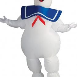 Fantasia inflavel mascote