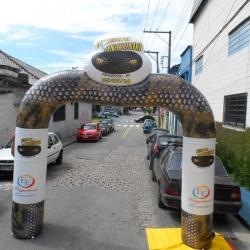 Portal inflavel festa da anaconda